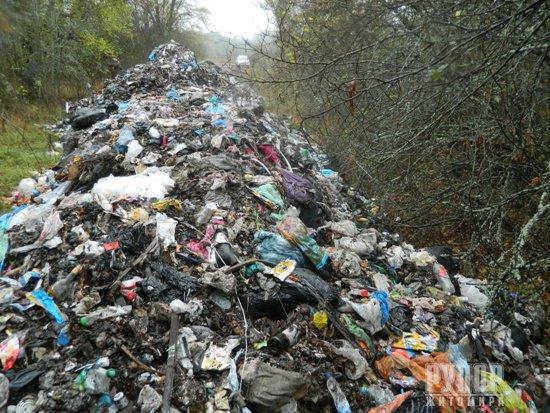 Черговий скандал на Житомирщині: Голова РДА виявив сміття зі Львова... прямо на території природного заповідника