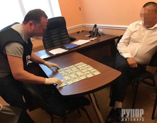 У Житомирі СБУ затримала депутата райради, який намагався підкупити поліцейського для прикриття нелегального видобутку бурштину