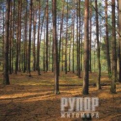 Лісова служба США та житомирські лісівники поділяться досвідом гасіння лісових пожеж