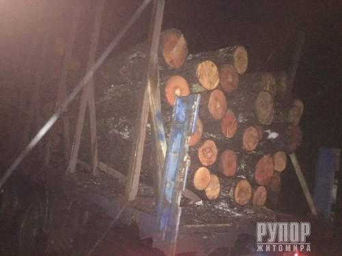 На Житомирщині незаконно вивозять ліс