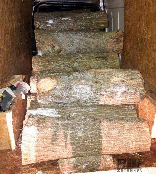 На Житомирщині затримали водія, який вантажівкою перевозив дуб без документів. ФОТО