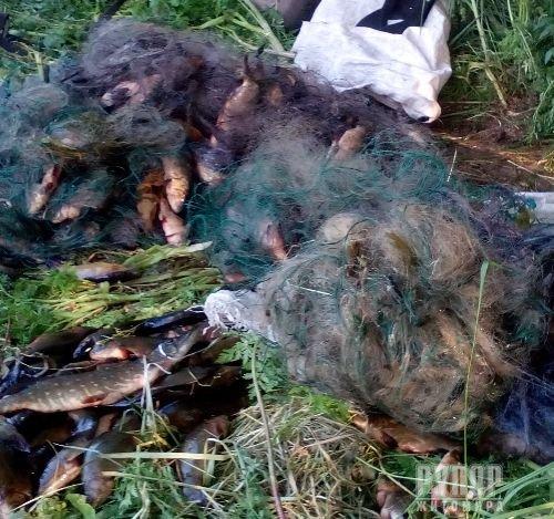 В Житомирській області на «гарячому» затримано любителів легкої наживи