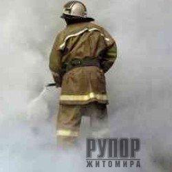 На Житомирщині загорівся автомобіль, в якому їхав чоловік разом із донькою та онукою
