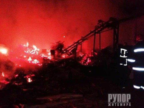 В Житомирській області на території деревообробного підприємства - масштабна пожежа. ФОТО