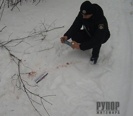 В баранівському лісі браконьєри застрелили кабана
