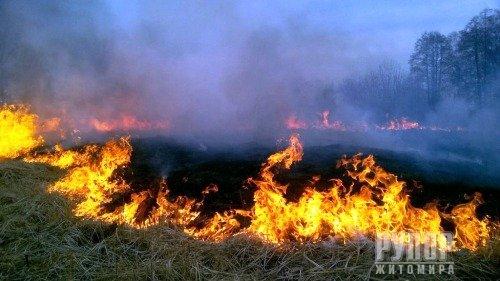 Рятувальники області закликають жителів не створювати пожеж в екосистемах!