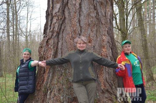 В Городницькому лісгоспі з'явився вже другий «журналістський» ліс. ФОТО