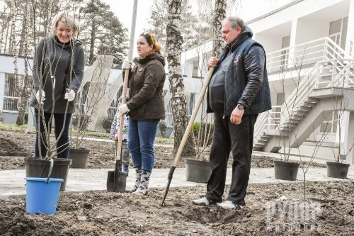 Геннадій Зубко, Ігор Гундич та волонтери висадили алею магнолій і троянд біля Центру вертебрології