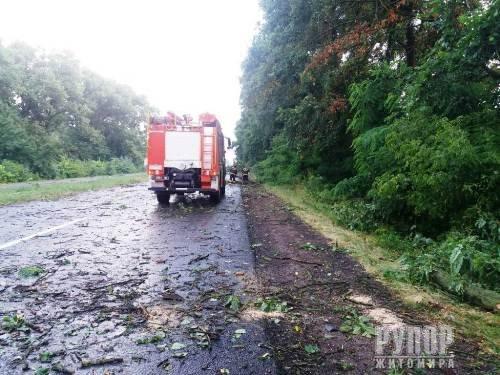 В Житомирській області негода наробила лиха. ФОТО