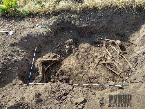 В Житомирській області виявили місце масового поховання солдатів РСЧА, які загинули в липні 1941-го року. ФОТО