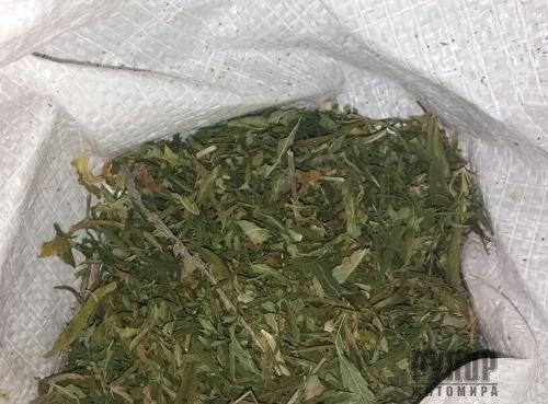 На Житомирщині у «відеоблогера» вилучили... 2,3 кг наркосировини