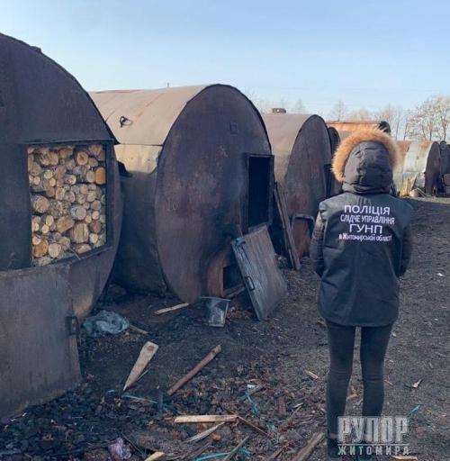 На Житомирщині викрито підприємців, які тривалий час здійснювали випалювання та експорт деревного вугілля з краденого лісу