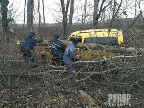 На Житомирщині перекинувся мікроавтобус з пасажирами. ФОТО