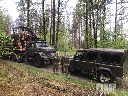 Прикордонники затримали вантажівку з краденою деревиною