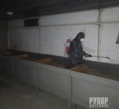 Covid-19: На Житомирщині продезінфікували міський ринок