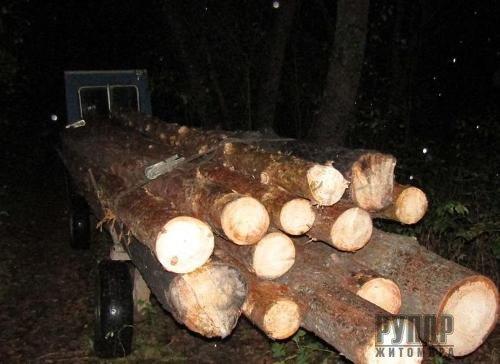 На Житомирщині поліцейські зупинили два незареєстровані трактори з нелегальним лісом