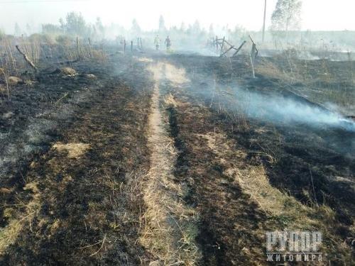 В Житомирській області упродовж доби двічі ліквідовували займання сухої трави на площі 3 га території