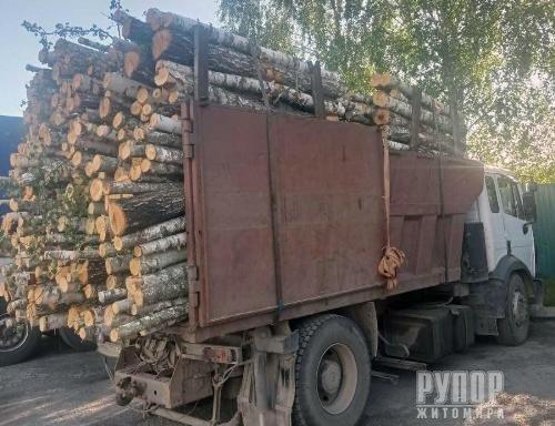 В Житомирській області затримали вантажівку з необлікованою деревиною